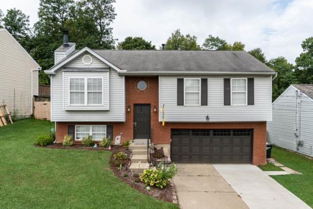 9172 Tamarack Drive, Covington, KY 41017 (MLS #519853) :: Mike Parker Real Estate LLC