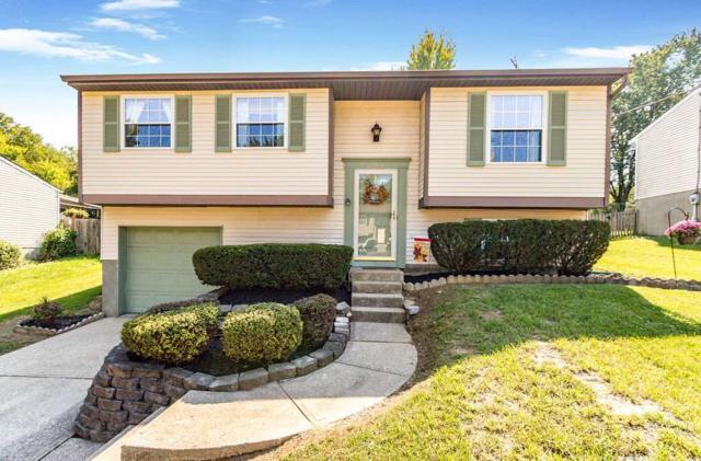 2204 Janes Lane, Covington, KY 41011 (MLS #520294) :: Apex Realty Group