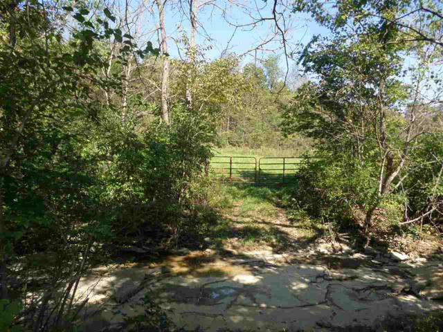 3021 1/2 Aa Hwy, Brooksville, KY 41004 (MLS #520601) :: Mike Parker Real Estate LLC
