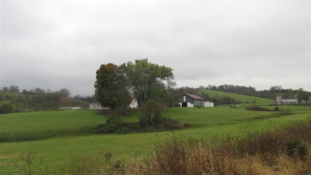 2715 Hayes Station Road, Falmouth, KY 41040 (MLS #521379) :: Mike Parker Real Estate LLC