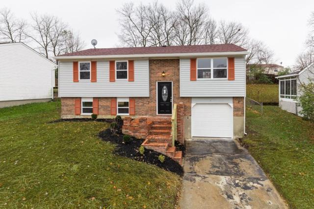 41 Carriage Drive, Erlanger, KY 41018 (MLS #521839) :: Apex Realty Group