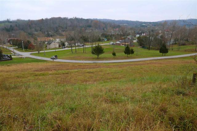93-94 Wideview Drive Lot 93 & 94, Sparta, KY 41086 (MLS #521938) :: Mike Parker Real Estate LLC