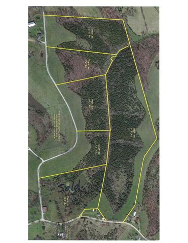 31.8 acres Highway 22, Falmouth, KY 41040 (MLS #522793) :: Caldwell Realty Group