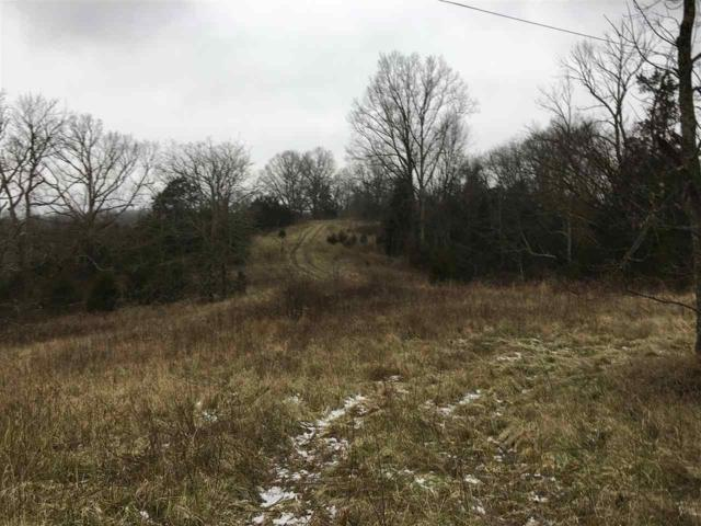 Gayles Gorge Road, Mt Olivet, KY 41064 (MLS #525189) :: Caldwell Realty Group