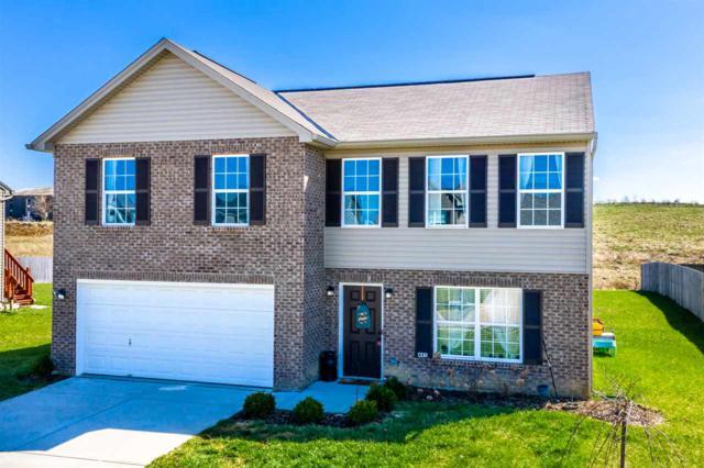 445 Lost Creek Drive, Walton, KY 41094 (MLS #525469) :: Mike Parker Real Estate LLC
