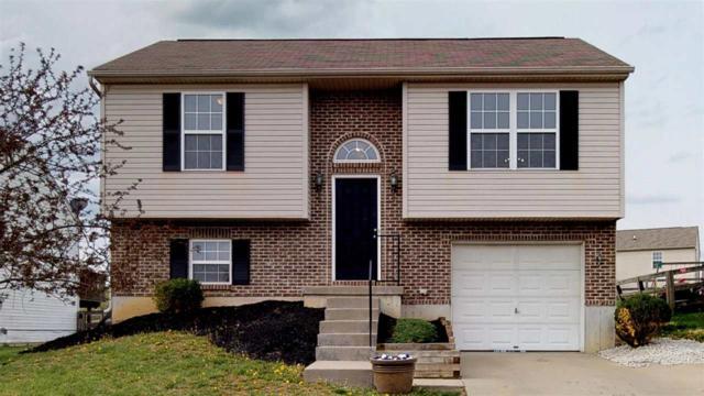 590 Branch Court, Independence, KY 41051 (MLS #525765) :: Mike Parker Real Estate LLC