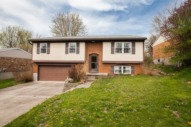 3479 Blue Creek Drive, Erlanger, KY 41018 (MLS #525840) :: Mike Parker Real Estate LLC