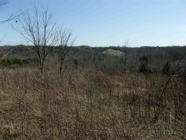 50 Ac Central Ridge Road, Mt Olivet, KY 41064 (MLS #525904) :: Caldwell Realty Group