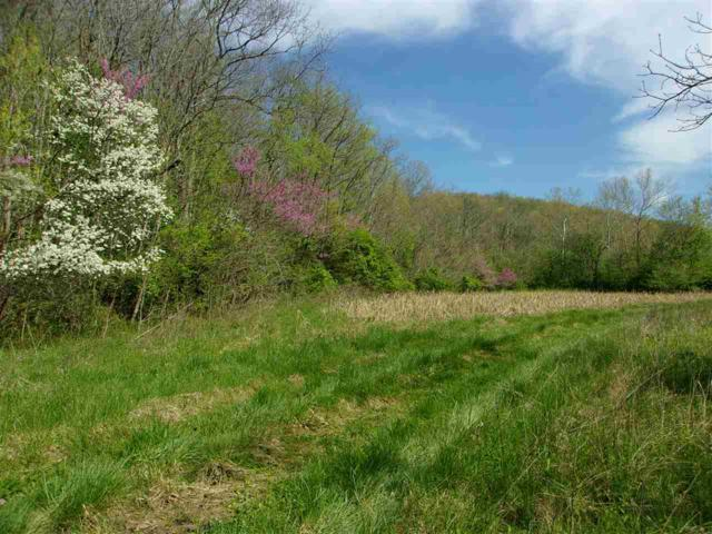 150 Ac Hwy 1159, Foster, KY 41043 (MLS #526121) :: Caldwell Realty Group