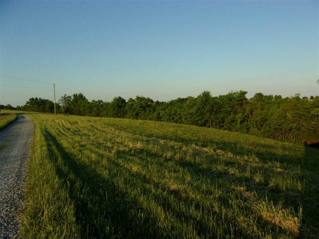 7 Ac Michelle Drive, Brooksville, KY 41004 (MLS #526854) :: Caldwell Realty Group