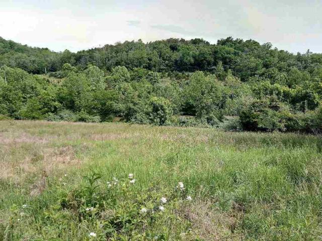 Lot 1 Hillandale Drive, Sanders, KY 41083 (MLS #527146) :: Mike Parker Real Estate LLC