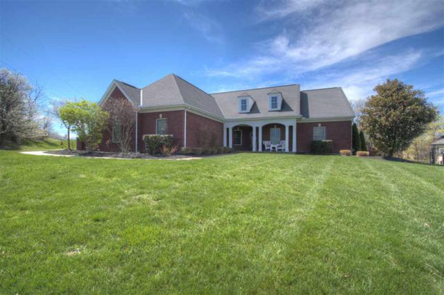 806 Pointe Drive, Villa Hills, KY 41017 (MLS #527192) :: Apex Realty Group