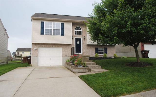 619 Branch Court, Independence, KY 41051 (MLS #527447) :: Caldwell Realty Group