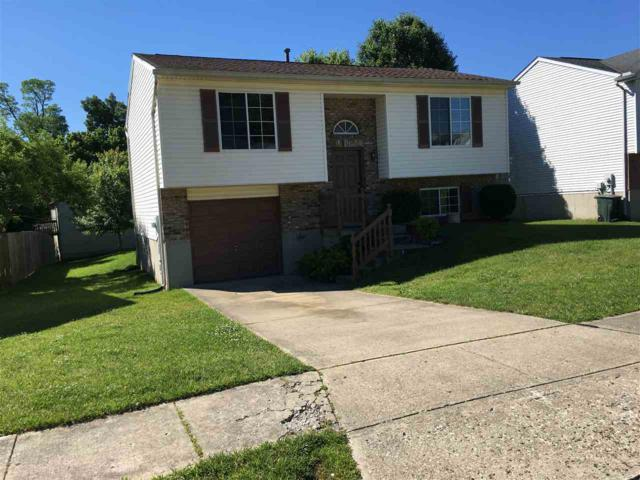 3655 Mitten Drive, Elsmere, KY 41018 (MLS #528058) :: Apex Realty Group