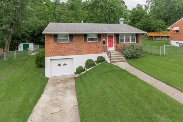154 Valley View Drive, Southgate, KY 41071 (MLS #528063) :: Mike Parker Real Estate LLC