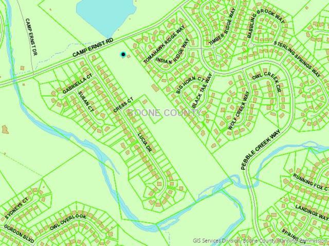 7456-A Camp Ernst, Burlington, KY 41005 (MLS #529308) :: Caldwell Group