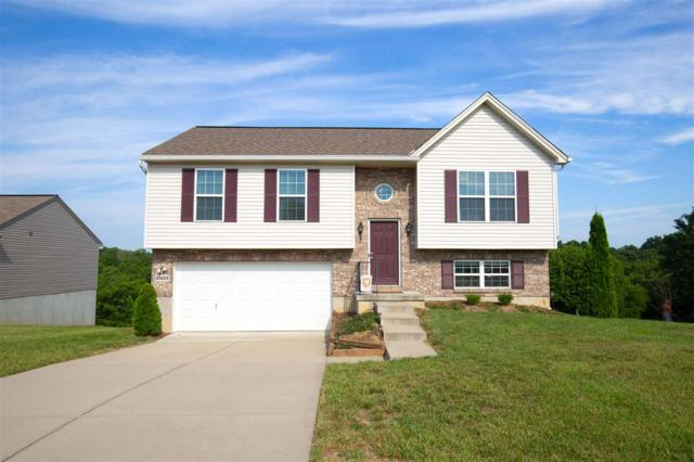 10423 Canberra Drive, Independence, KY 41051 (MLS #529568) :: Caldwell Realty Group