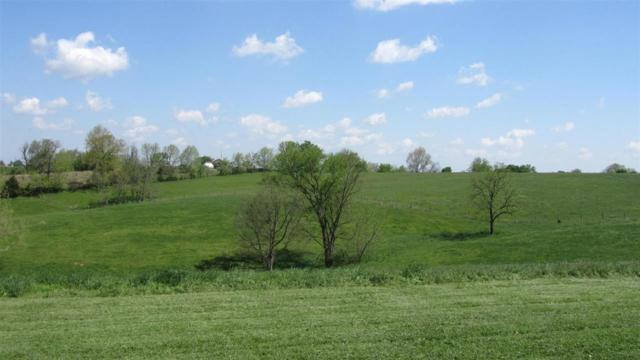 202 Marshall Farms Lane C, Berry, KY 41003 (MLS #529857) :: Caldwell Realty Group