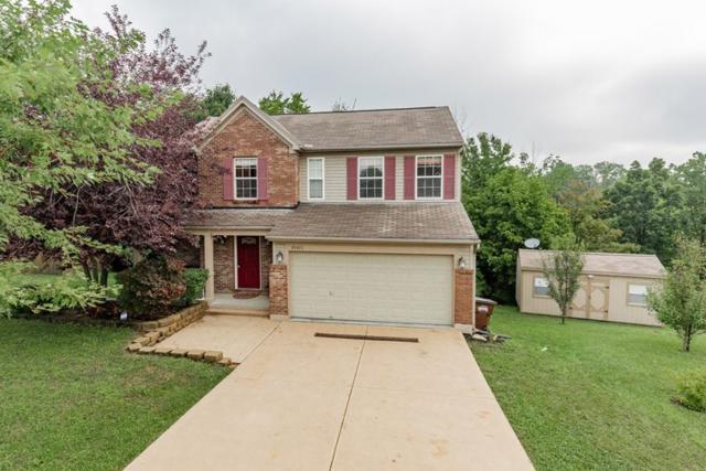 10411 Vicksburg Lane, Independence, KY 41051 (MLS #529872) :: Mike Parker Real Estate LLC