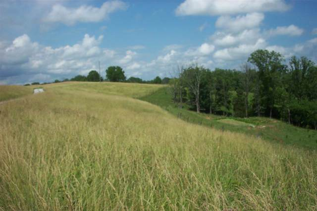 41761 Acres Castle Knoll, Williamstown, KY 41097 (MLS #532007) :: Caldwell Realty Group