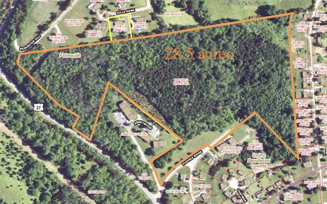 28.5 acres Hughes Ridge Road, Falmouth, KY 41040 (MLS #534125) :: Mike Parker Real Estate LLC
