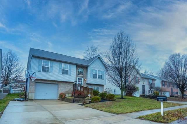 3801 Sugarberry Drive, Hebron, KY 41048 (#535484) :: The Chabris Group