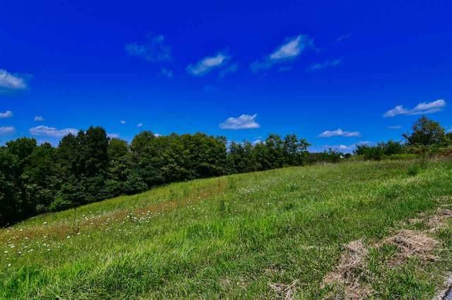 Heekin Lawrenceville Road, Williamstown, KY 41097 (MLS #535828) :: Mike Parker Real Estate LLC