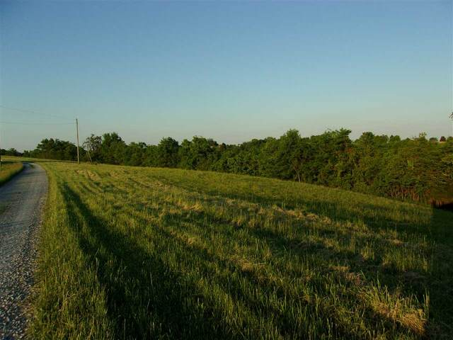 7 Ac Michelle Drive, Brooksville, KY 41004 (MLS #537789) :: Caldwell Realty Group