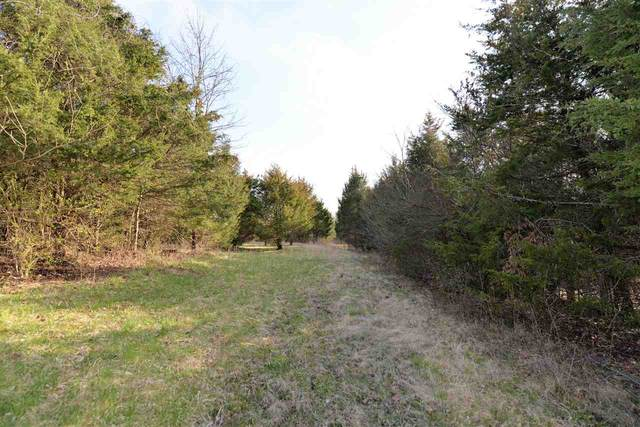 1265 Lincoln Ridge Road, Williamstown, KY 41097 (MLS #538059) :: Mike Parker Real Estate LLC