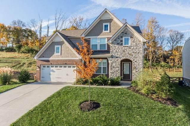 7996 Arcadia Boulevard, Alexandria, KY 41001 (MLS #538224) :: Mike Parker Real Estate LLC