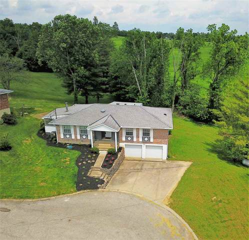 56 Walnut Hall Drive, Independence, KY 41051 (MLS #538353) :: Apex Realty Group