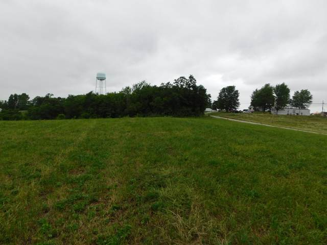 Stewartsville, Williamstown, KY 41097 (MLS #539324) :: Caldwell Group