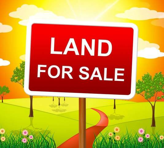 Carter Court Lot 11, Williamstown, KY 41097 (MLS #539383) :: Mike Parker Real Estate LLC
