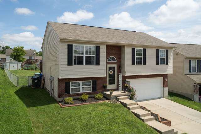 985 Wermeling Lane, Elsmere, KY 41018 (MLS #540501) :: Caldwell Group