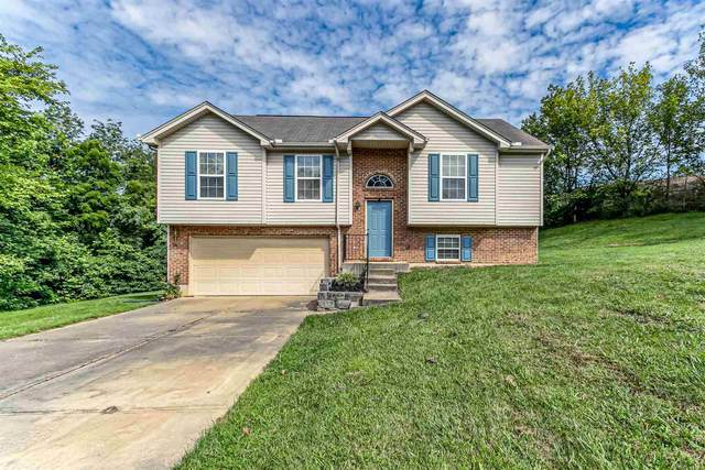 756 Bear Court, Independence, KY 41051 (MLS #540725) :: Apex Group