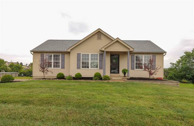 10371 Lynchburg Drive, Independence, KY 41051 (MLS #541239) :: Apex Group