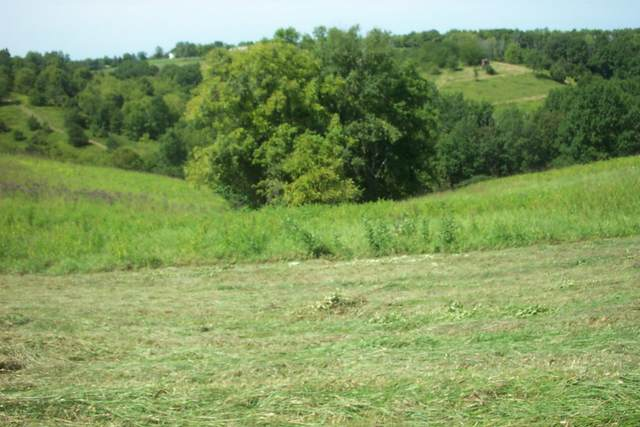 10 Acres Castle Knoll, Williamstown, KY 41097 (MLS #541534) :: Caldwell Group
