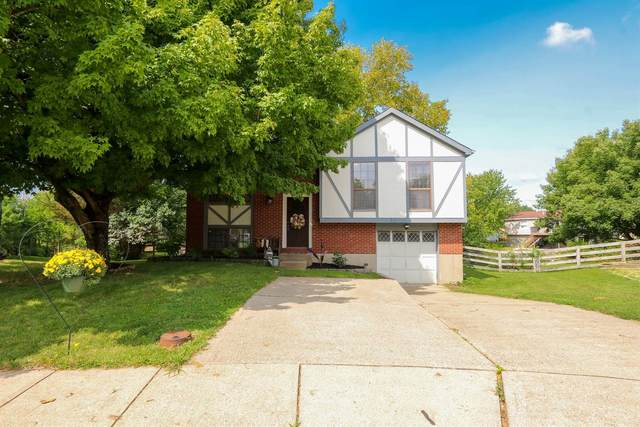 1590 Hickory Hill Court, Florence, KY 41042 (MLS #541793) :: Caldwell Group