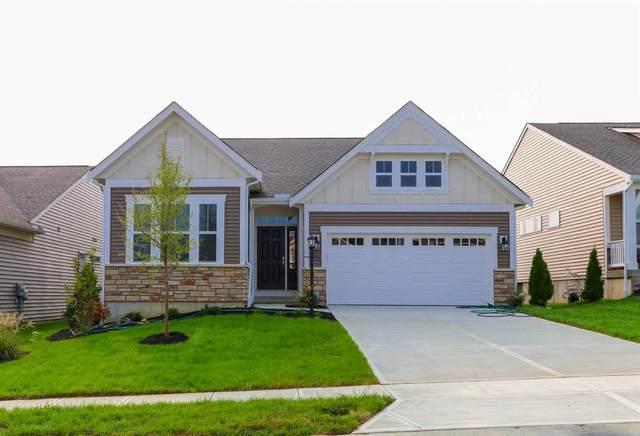 2240 Amici Drive, Covington, KY 41017 (MLS #541831) :: Caldwell Group