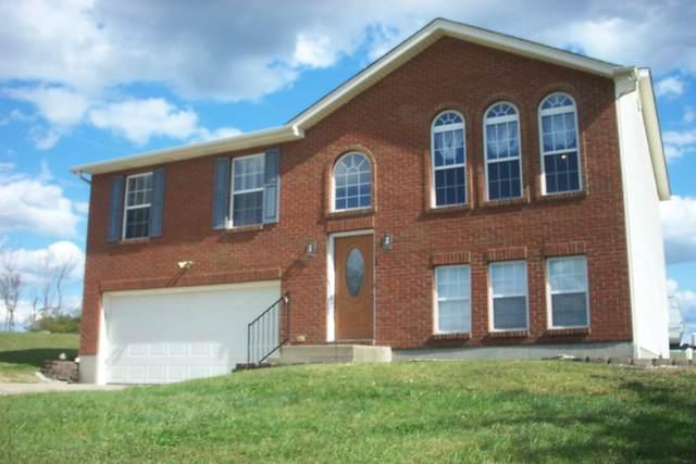 180 Hogg Ridge, Williamstown, KY 41097 (MLS #542440) :: Apex Group