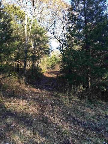 Swope Road, Owenton, KY 40359 (MLS #543459) :: Mike Parker Real Estate LLC
