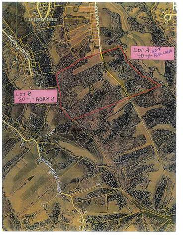 Lot B Conrad Lane, Williamstown, KY 41097 (MLS #543533) :: Mike Parker Real Estate LLC