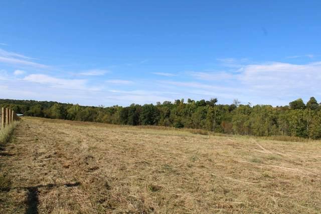 141 Creek Bottom, Demossville, KY 41033 (MLS #544212) :: Mike Parker Real Estate LLC