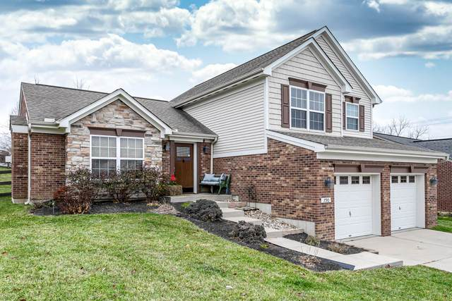790 Berlander Drive, Independence, KY 41051 (#544488) :: The Chabris Group