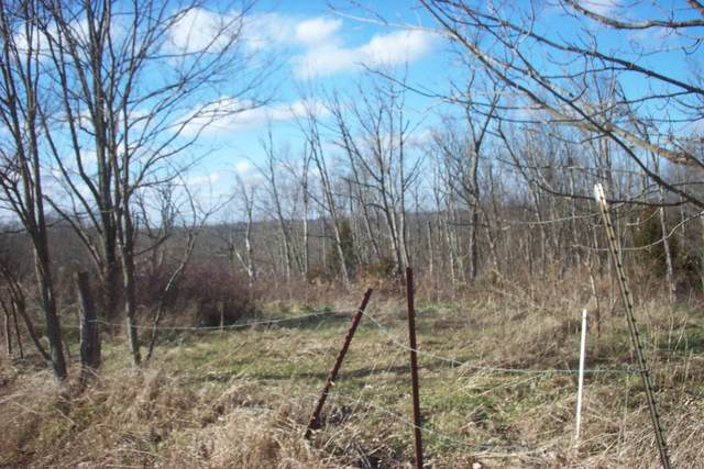 7.9 acres W Ky Hwy 22, Williamstown, KY 41097 (MLS #544625) :: Mike Parker Real Estate LLC