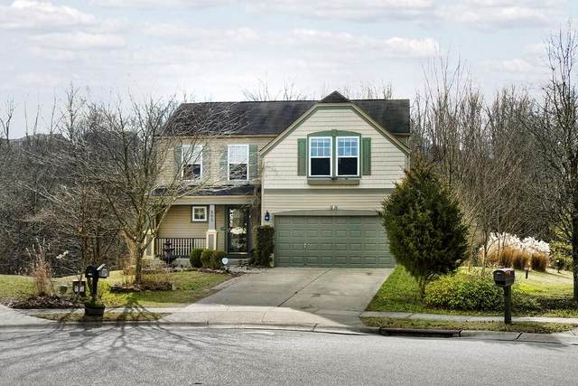 805 Ackerly Drive, Independence, KY 41051 (MLS #544879) :: Mike Parker Real Estate LLC