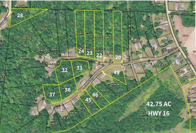 Lot 20 Amber Drive, Glencoe, KY 41046 (MLS #545061) :: Mike Parker Real Estate LLC