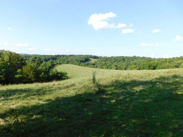 Morgan Creek Road, Corinth, KY 41010 (MLS #545545) :: Mike Parker Real Estate LLC