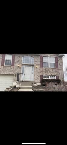 175 Ten Mile Drive Drive, Crittenden, KY 41035 (MLS #545834) :: Mike Parker Real Estate LLC
