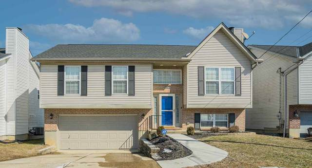 3785 Luke Lane, Elsmere, KY 41018 (MLS #546225) :: Caldwell Group